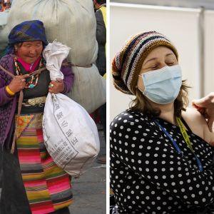 Bildmontage med en bild på cyanobakterier, en kvinna som tillhör en tibetiansk folkgrupp i Kina och en kvinna som blir vaccinerad.