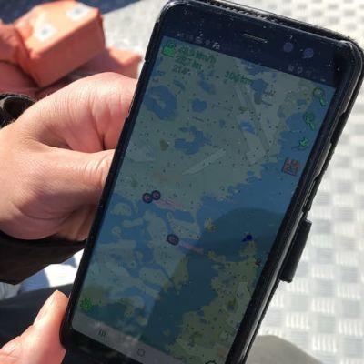 Lampaiden tarkkailua GPS:n avulla