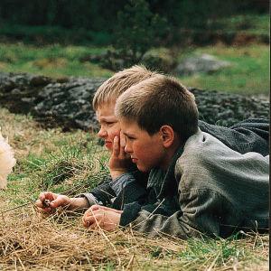 Pojat katselevat kanaa Fallesmannin Arvo ja minä -tv-sarjassa.