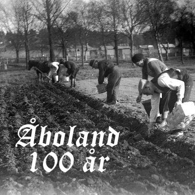 Personer står nerböjda över potatisodling i Kuppisparken i Åbo år 1938.