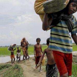 Rohingya-vähemmistöön kuuluvat pakolaiset matkalla Bangladeshin Teknafiin.