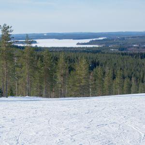 Maisema Saukkovaaralta.