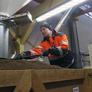 Mies työskentelee kuminan jatkojalostusyrityksessä
