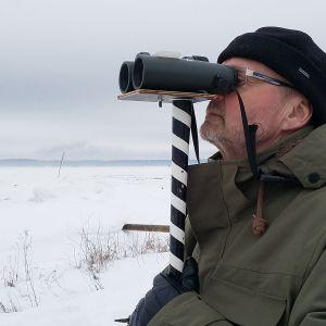 Ari Lähteenpää tarkkailee taivaalle, josko näkyisi lintuja