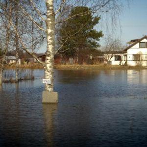 Hannu ja Ann-mari Krookin talo jäi kokonaan veden saartamaksi 19. huhtikuuta.