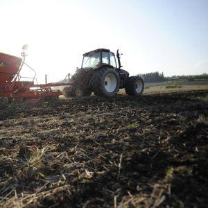 traktori kevätpellolla