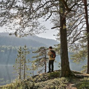 nainen kukkulalla metsässä