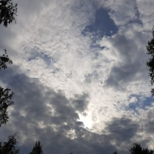 Pilvinen taivas