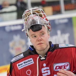 Jani Nieminen, Fischtown Penguins