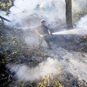 Italialainen palomies sammuttaa metsäpaloa lähellä Roomaa heinäkuussa 2017.