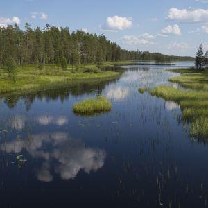 Vesistömaisema kansallispuistossa.