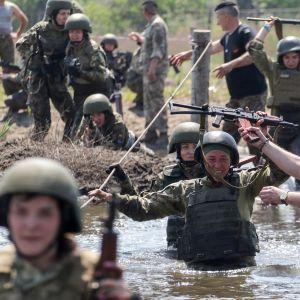 Ukrainan laivaston alokkaita