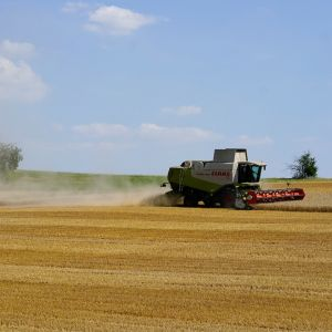 Viljelijä pui vehnäpeltoaan Reiskirchenissä, Saksassa perjantaina.