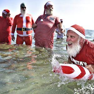 Joulupukit kylpelvät rantavedessä.