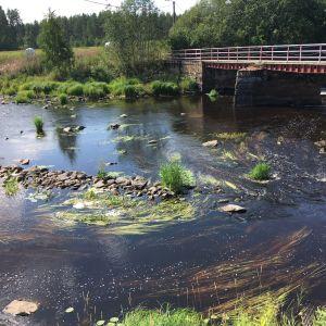 Lapuanjoessa virtasi 25.7.2018 Lakaluoman myllyn kohdalla tavallista vähemmän vettä.