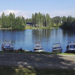 Kuhakunkkukisan osallistujia Paltamo kesällä 2018