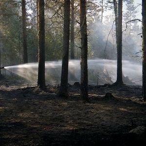 Jälkisammutustöitä kesällä Kauhavan Viinikassa Ohranevan turvesuon viereisessä metsässä.