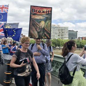 Kesäkuun mielenilmaus Britannian EU-eroa vastaan Lontoossa.
