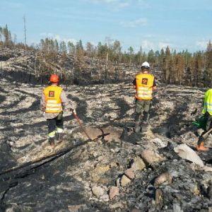 Ruotsin metsäpaloja on sammuttamassa kymmenen lappilaismetsuria.