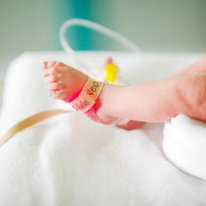 keskosvauvan jalat