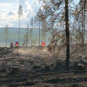 Metsäpalon jälkisammutustyöt.
