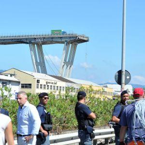 Genovan romahtanut Morandi-silta