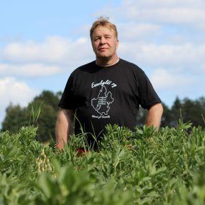 Maanviljelijä Juha Lahtinen seisoo härkäpapupellolla