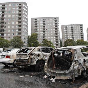 Poltettuja autoja kadulla.