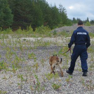 Poliisikoirapartio maastossa.