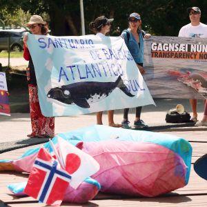 Valaanpyyntiä vastustavia mielenosoittajia Brasiliassa.