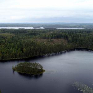 Aitolampi Heinävedellä. Lammen tuntumaan suunnitellaan grafiittikaivosta. Taustalla Varisvesi.