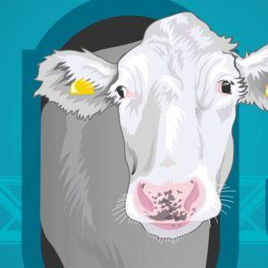 Lehmärobotti