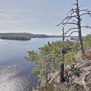 Maisema Sulkavan Pisamalahden linnavuorelta toukokuussa.