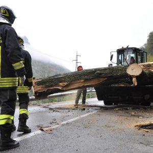 Palokunta siirtää pois tielle kaatunutta puuta Italian pohjoisosissa sijaitsevassa Lilianessa. Puu kaatui auton päälle surmaten kaksi ihmistä.