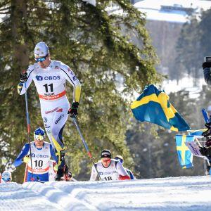 Calle Halfvarsson Falunin maailmancup-ladulla.