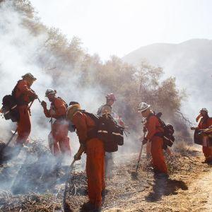 Palomiehet yritttävät saada maastopaloja hallintaan vuorenrinteellä West Hillsissä, Kaliforniassa.