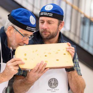 Sveitsiläiset juustotuomarit työn touhussa. EU-tuomioistuimen tuomarit katsoivat, ettei makuasioista ole lopullista totuutta.
