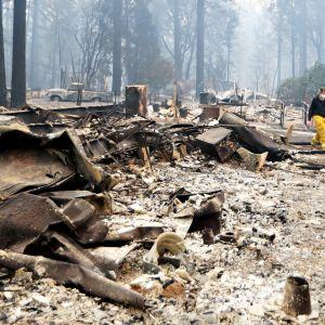 Maastopalon tuhoja.