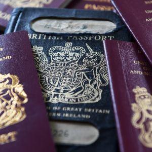 Keskellä sinikantinen brittipassi, ympärillä viininpunakantisia passeja.