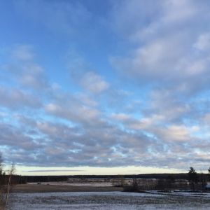 Kiiskisen kytö, peltoaukeama Luoma-aholla Alajärvellä.