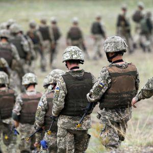 Ukrainan armeijan sotilaita.