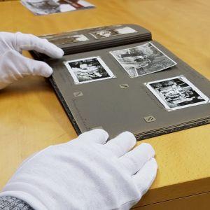 Amanuenssi käsittelee vanhoja kuvia suojakäsineet käsissään
