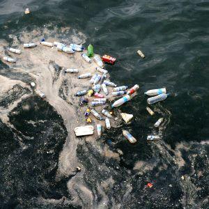 pulloja meressä