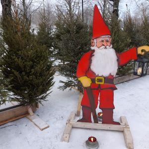 Joulukuusia rivissä ja pahvinen joulupukki