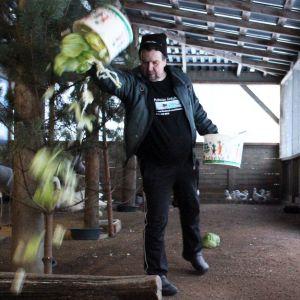 Hoitaja Arto Hokkanen ruokkii lintuja Pyhtään lintuhoitolassa.