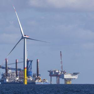 Tuulivoimapuistoa asennetaan Rügenin saaren edustalle.