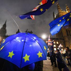 Parlamenttitalon edustalla brexit-mielenilmaisuja 15. tammikuuta.