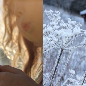 kesä- ja talvikuva