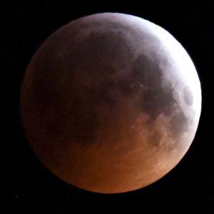 Täydellinen kuunpimennys nähtynä Espoossa maanantaiaamuna 21. tammikuuta.