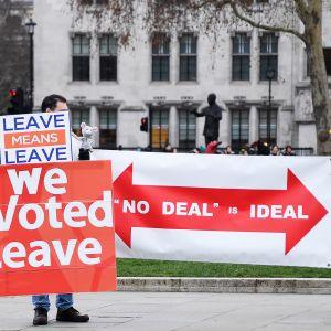 Brexitin kannattajia parlamentin ulkopuolella.
